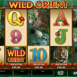 Wild Orient Tiny